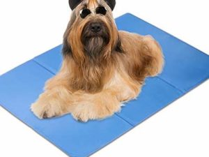 Ellie-Bo Large Self Cooling Gel Mat For Dogs – Designed to fit 36 inch large dog crate