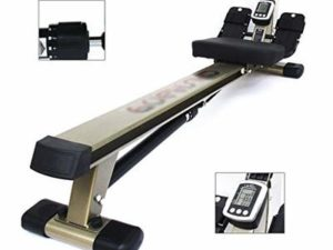 Rowing Machines Concept 2 Model D Hydraulic Resistance Sitting Posture Fitness Equipment Multi-functional Mute Paddles (Color : Gold, Size : 140 * 40 * 34cm)